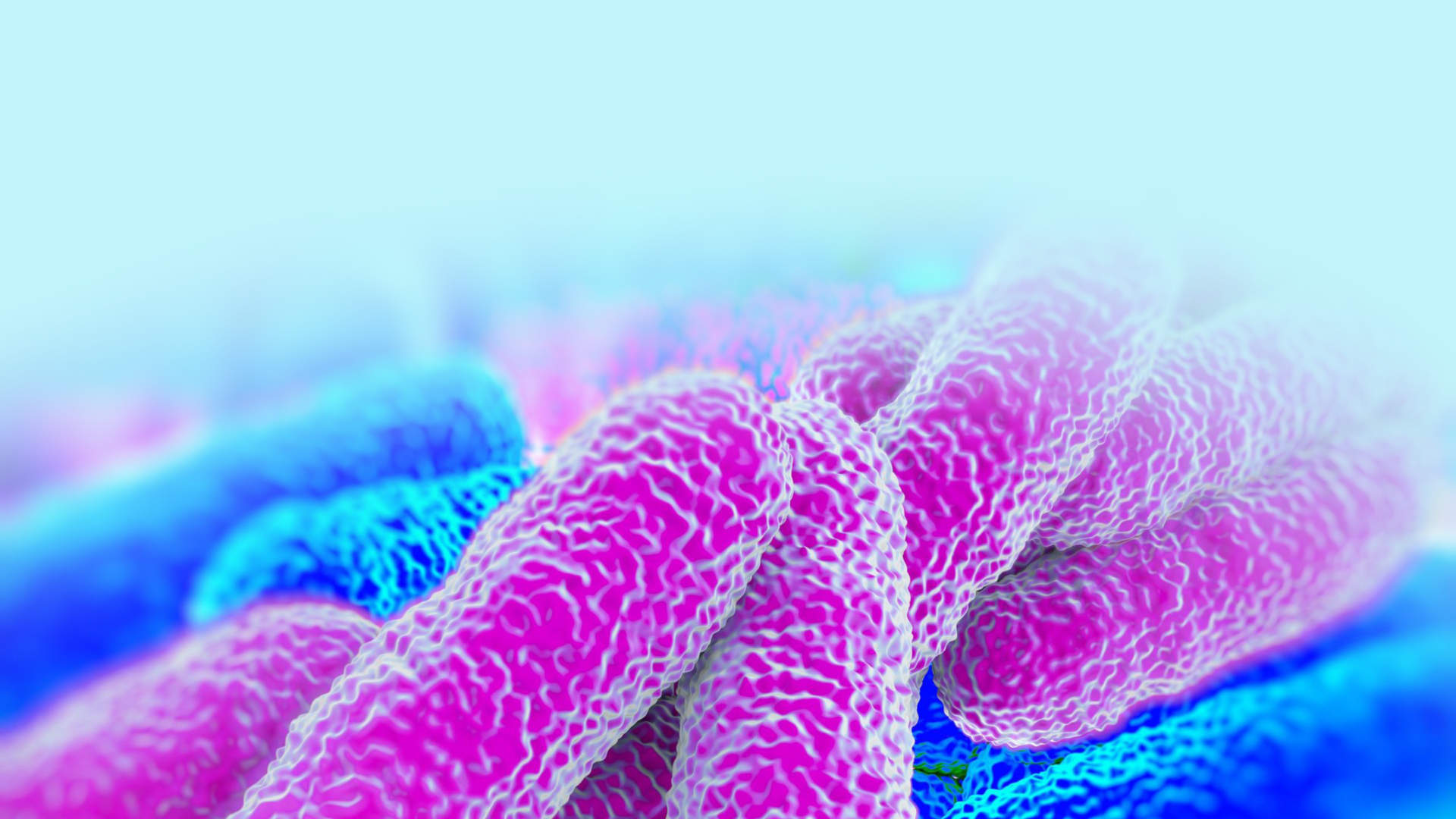 About Legionella & Legionnaires' disease in London